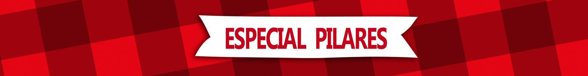 Regalos especiales Pilar 2020